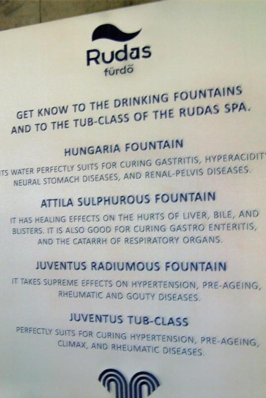 A list of the dissolved minerals in the drinking fountain waters at the Rudas Baths
